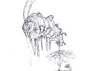 Quiero ilustrar  EdiaN -sketch_1.jpg