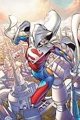Superwoman-11292_400x600.jpg