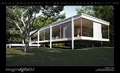 Farnsworth House-farnsworth-house-primavera-d2.jpg