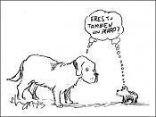 Deja aqui tu chiste, no se admiten devoluciones   -perros.jpg