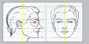 ayuida para ajustar blueprint -loomis-female-head-guias.png