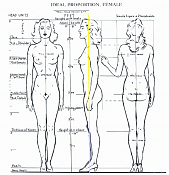 ayuida para ajustar blueprint -loomis-female-body-guias.png