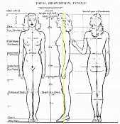 Ayuida para ajustar blueprint-loomis-female-body-guias.png