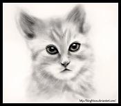 Kinght, un poquillo de 2D-kinght_cat.jpg