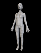 Princesa abisinia  wip -abisinian-princess-body1-wire.png