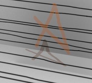 canal alfa-alfa-con-color.jpg