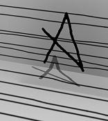 Canal alfa-alfa-con-color-negro.jpg