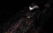 Spider in the darkness -bpr_renderchop.jpg