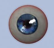 ayuda ojo realista-9-3-2011-13.3.29-10.jpg