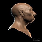 Busto Neanderthal-neanderthal03.jpg