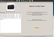problema area y botones laterales de bamboo wacom pentouch cth-460-pantallazo.png