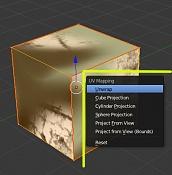 Blender 2 56 Beta-uv257.jpg