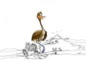 Suri un ave en extincion-suri-dibj-4.jpg