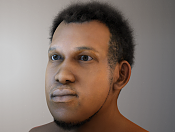 Shaders face -render_test_hairothercomp.png
