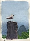 Escuela de arte - Ilustracion-gaviota.jpg