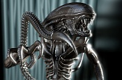 alien Stereoscopico-16.jpg