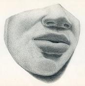 Escuela de arte - Ilustracion-rostro.jpg