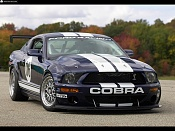 Ford Mustang-ford_2006-mustang-fr500-gt-002_3.jpg