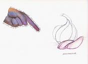Ilustraciones de adal-ajospica.jpg