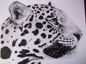 Mis dibujos-leopardo.jpg