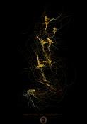 Trabajos de Gonzalo Golpe-ballet_big_golpeartecom.jpg