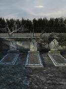 3 tumbas en el claro el bosque-cam6_00000.jpg