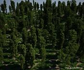 forest high poly FREE-tree-2bmodels-2bdp-2bstudio.jpg
