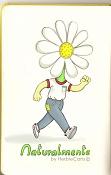 HerbieCans-naturalmente2__herbiecans.jpg