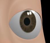 ayuda con shape en los parpados-ojo-abierto.png