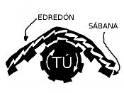 Un poco de ciencia-edredonsabana.png