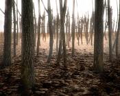 Bosque en Berlin-bosque_berlin.jpg