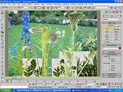 Maxwell  s flowers_mane162-wireplants6af.jpg