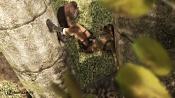 Lara 2 0-c3.jpg