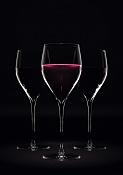 Wine Glass-copa020.jpg