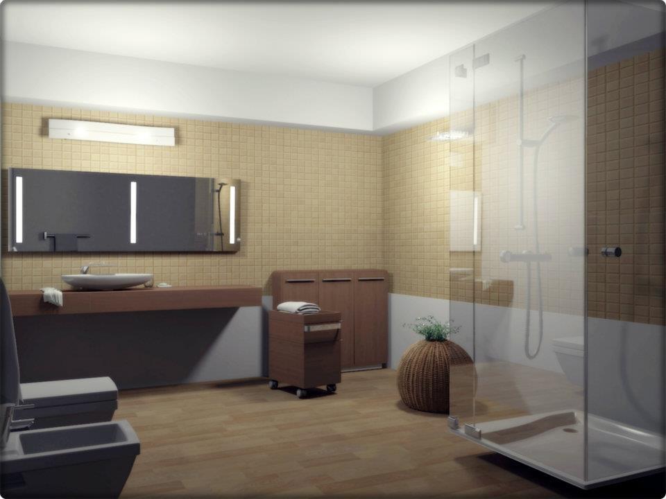 Baño-baot.jpg