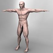 Escultura humana Rig gratuito  desnudez, planeando rig de musculos reales, BlenRig -renderveinrl6.jpg