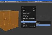 Blender 2 5x  alphas hasta 2 55 beta -selectionk.png