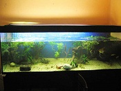 CONSEJO Compra TV Plasma-img_2858rtk.jpg