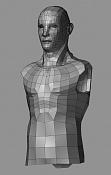 Cyborg Elf Wip-cyborgelfwipwireframe.jpg