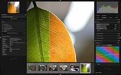 Darktable y photivo  proceso de imagenes RaW y mas -screenshot-2.png