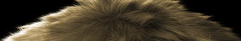 actualizacion del Yeti-fur_01.png