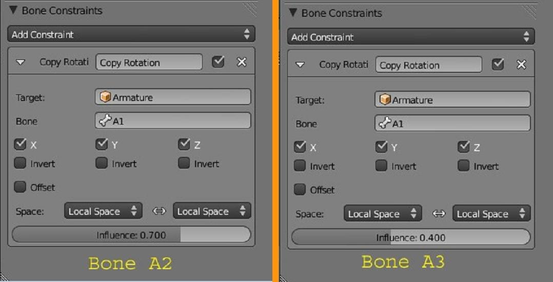 Bone constraints-a13.jpg