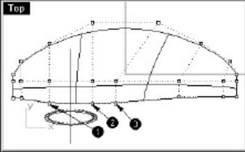 Esculpir-tutorial_esculpir_rhinoceros_5.jpg