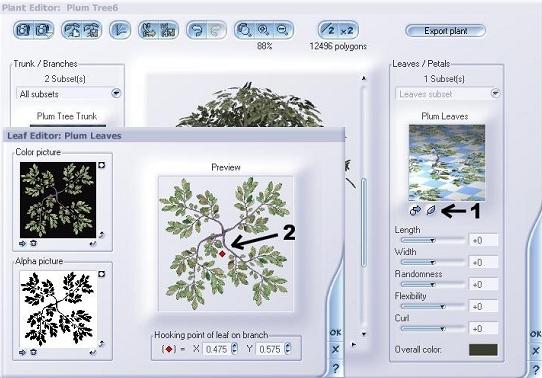 Cambiando hojas de plantas-1.jpg