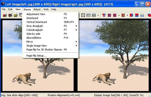Imagenes estereoscopicas-1.jpg