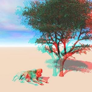 Imagenes estereoscopicas-2.jpg