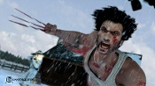 Wolverine-w5.jpg