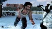 Wolverine-w2.jpg