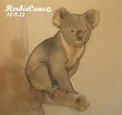 HerbieCans-koala_by-herbiecans.jpg