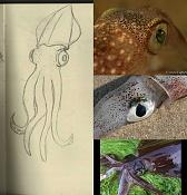 Fernando el Gigolo-squidy.jpg